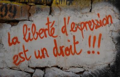 PAU 2015 Andalucía francés - Qu'est-ce que le droit à la liberté d'expression?