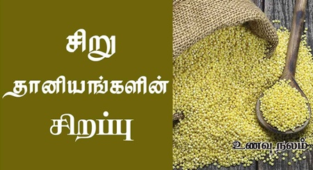 What are the different types of Millets?
