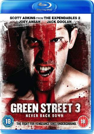 Green Street 3 Never Back Down 2013 BRRip 950MB Hindi Dual Audio 720p Watch Online Full Movie Download bolly4u