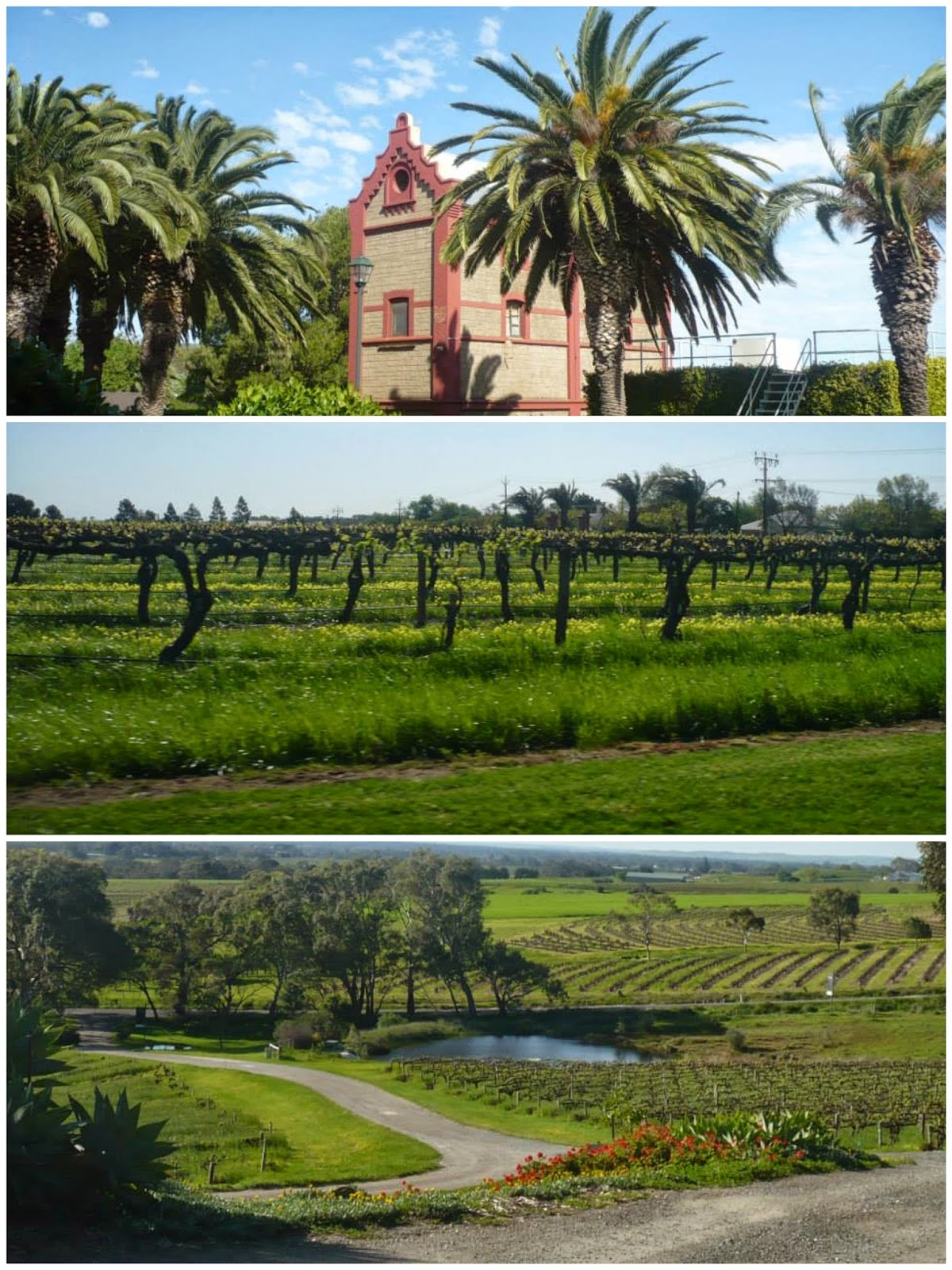 barossa south australia