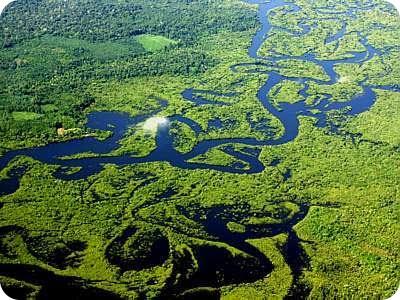 Los centros de biodiversidad más importantes