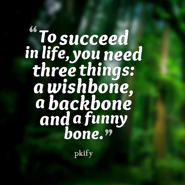 To succeed in life you need three things a wishbone a backbone and a funny bone Life Quotes