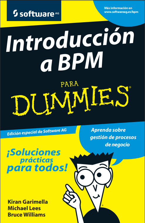 BPM for dummies pdf
