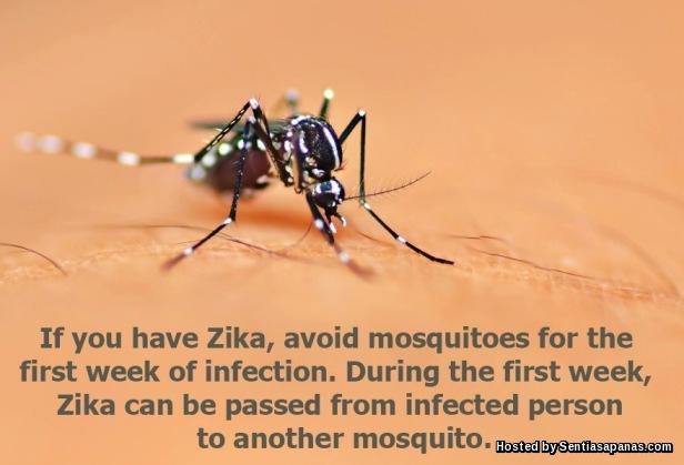 Mencegah Virus Zika