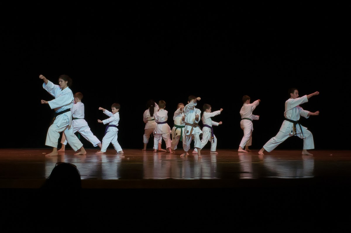 The Fearsomely Fantastic FIVE!: First Karate Performance!