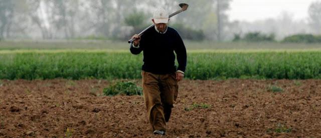 Η αγροτική πολιτική του ΣΥΡΙΖΑ....δημιουργεί ξανά κολίγους
