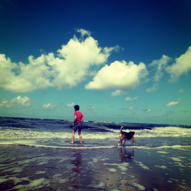 boy paddling in the sea with his dog following, bright blue sky with clouds and gentle waves