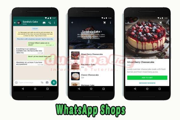 Fitur Shops WhatsApp Belanja Online Ala Instagram