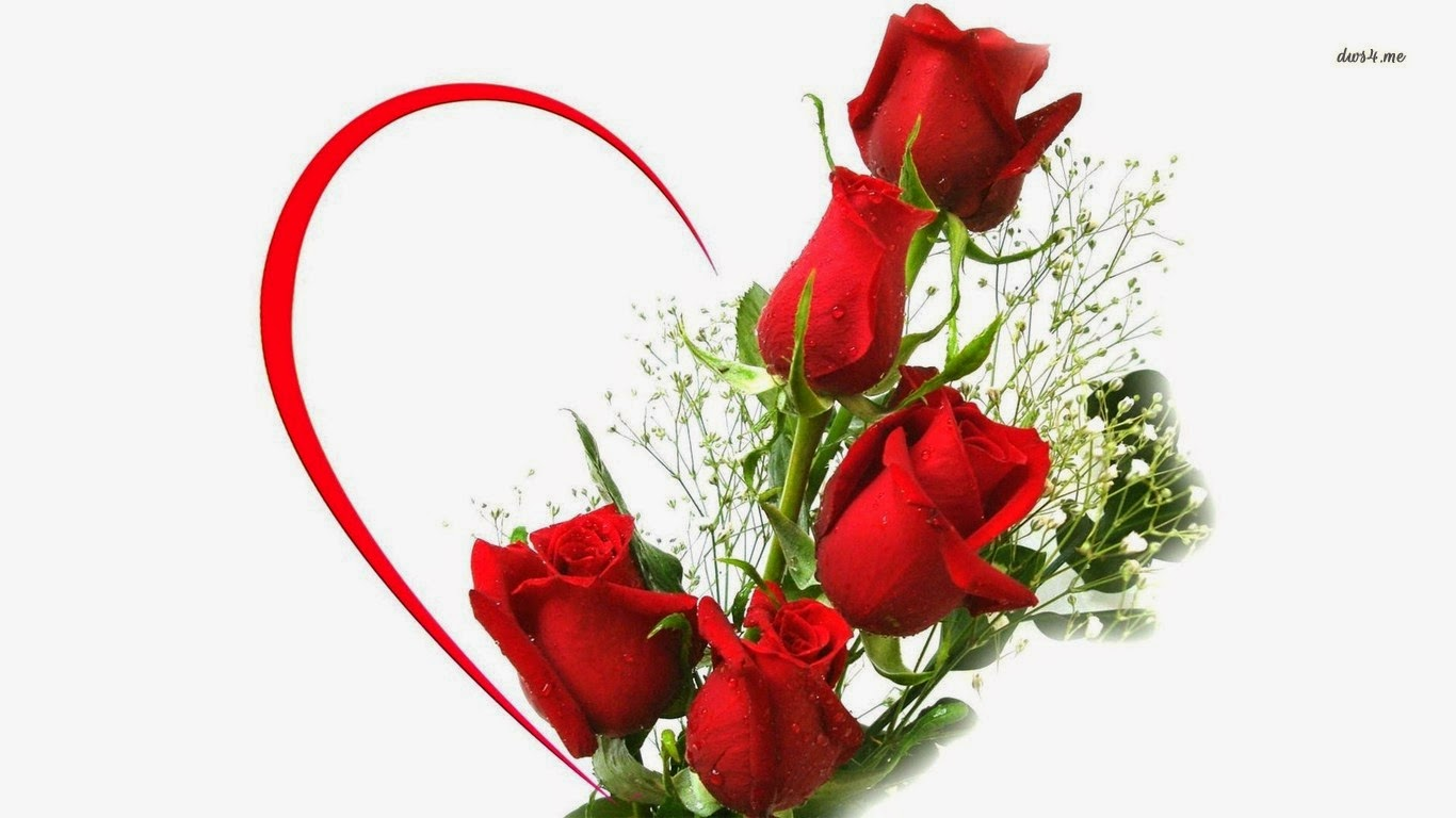 Love red roses fresh flowers - Bouquet of red roses hd images ...