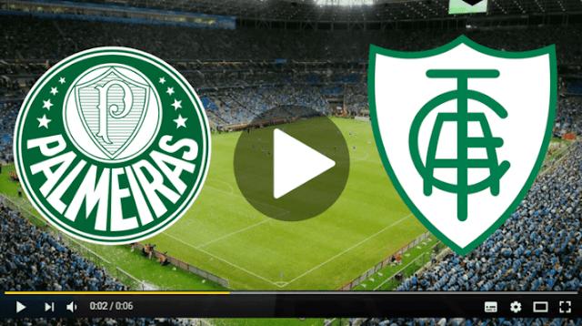 Assistir Palmeiras x América-MG Ao Viv