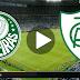 Jogo Palmeiras x América-MG Ao Vivo 21/11/2018