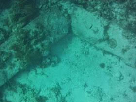 στα ανοικτά των ακτών του Bimini