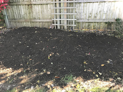 Tilled and planted garlic bed