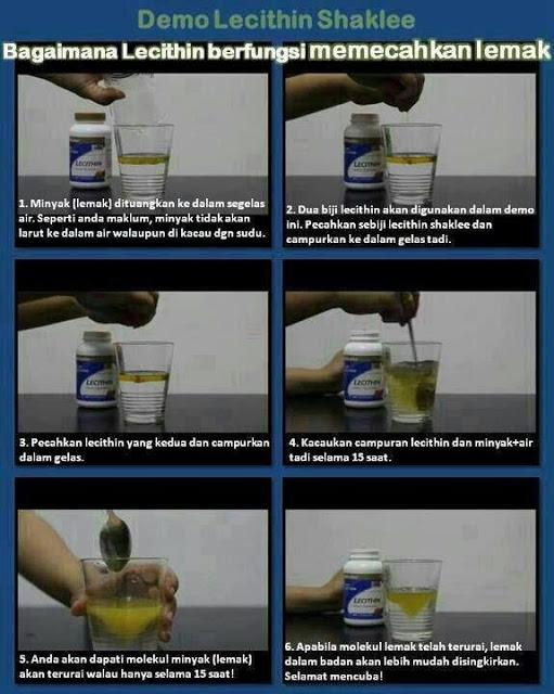 DEMO : Bagaimana Lecithin SHAKLEE menguraikan atau memecahkan lemak