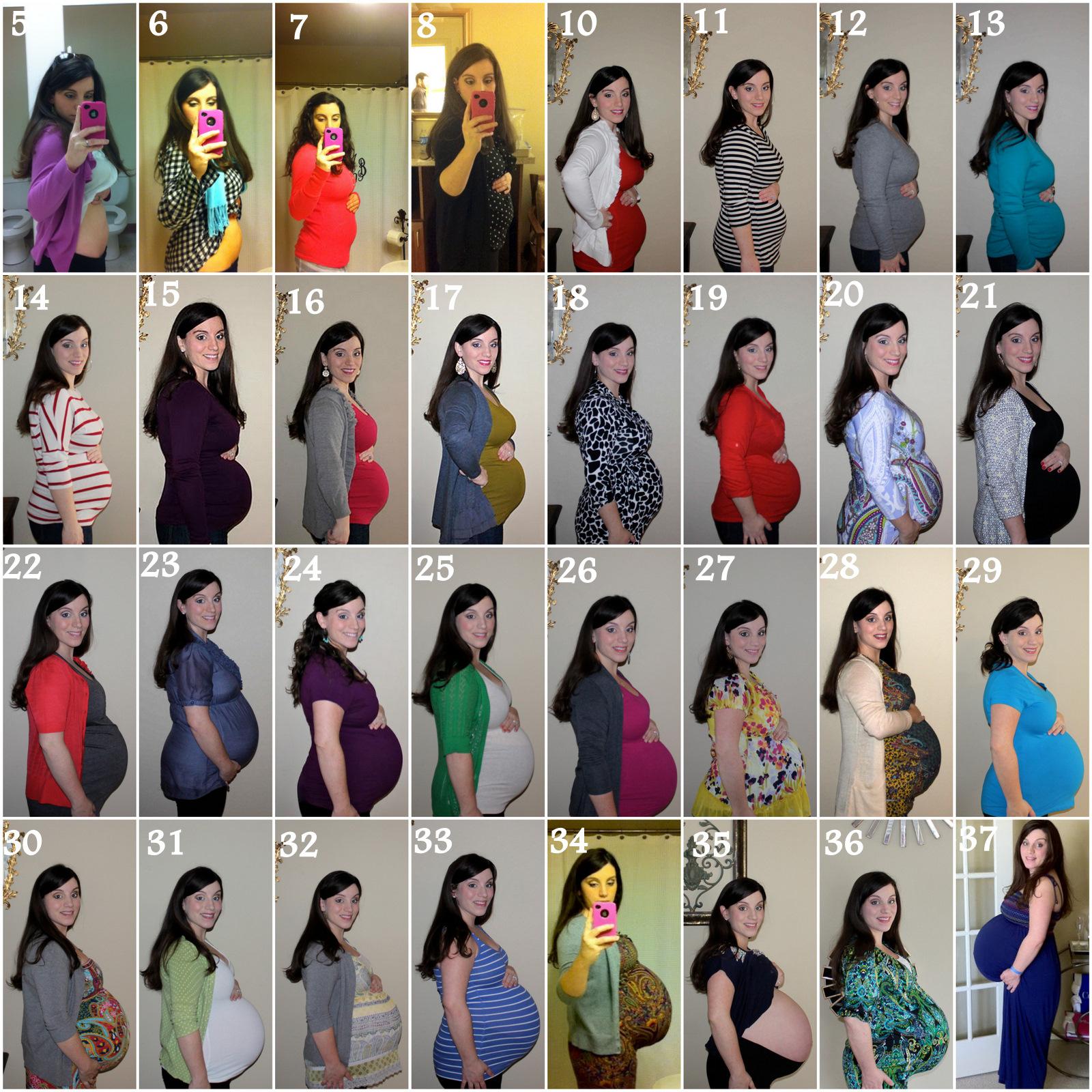 twin pregnancy belly week by week