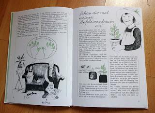 Christina Björk: Linnéa und die schnellste Bohne der Stadt. Wir pflanzen Kerne, Samen und Früchte