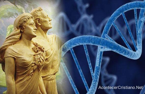 ADN de descendientes de Adán y Eva