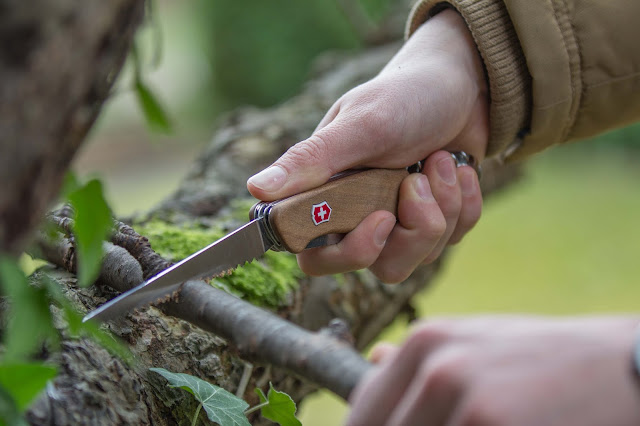 Victorinox Rangerwood-55 Taschenmesser schweizer-messer mit gravur nussbaum 02