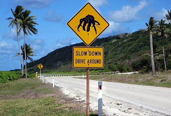 Sign for crab migration at Christmas Island