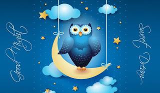 Good Night Sweet Dream Owl Wallpaper