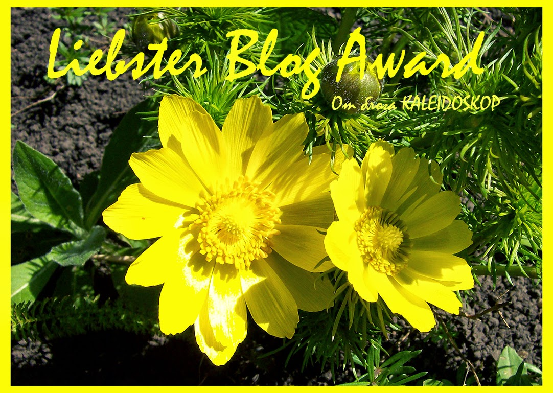 liebster blog award от блога kaleidoskop