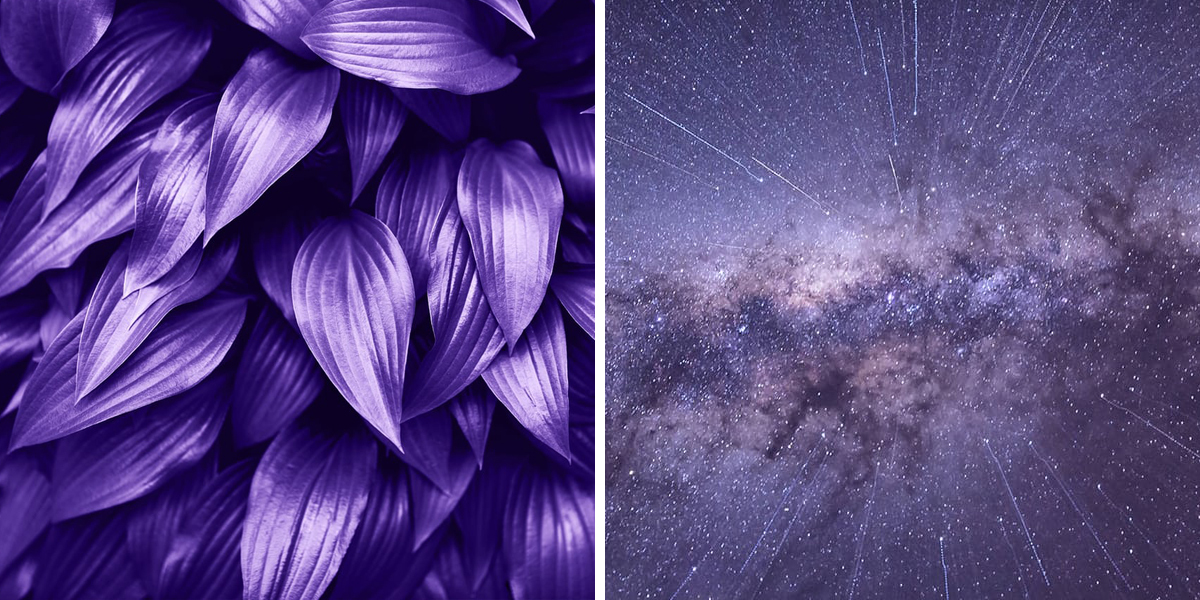 Ultra Violet Leaves and Galaxy