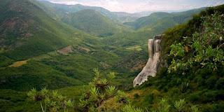 Concluyen trabajos de la COP13 sobre Biodiversidad