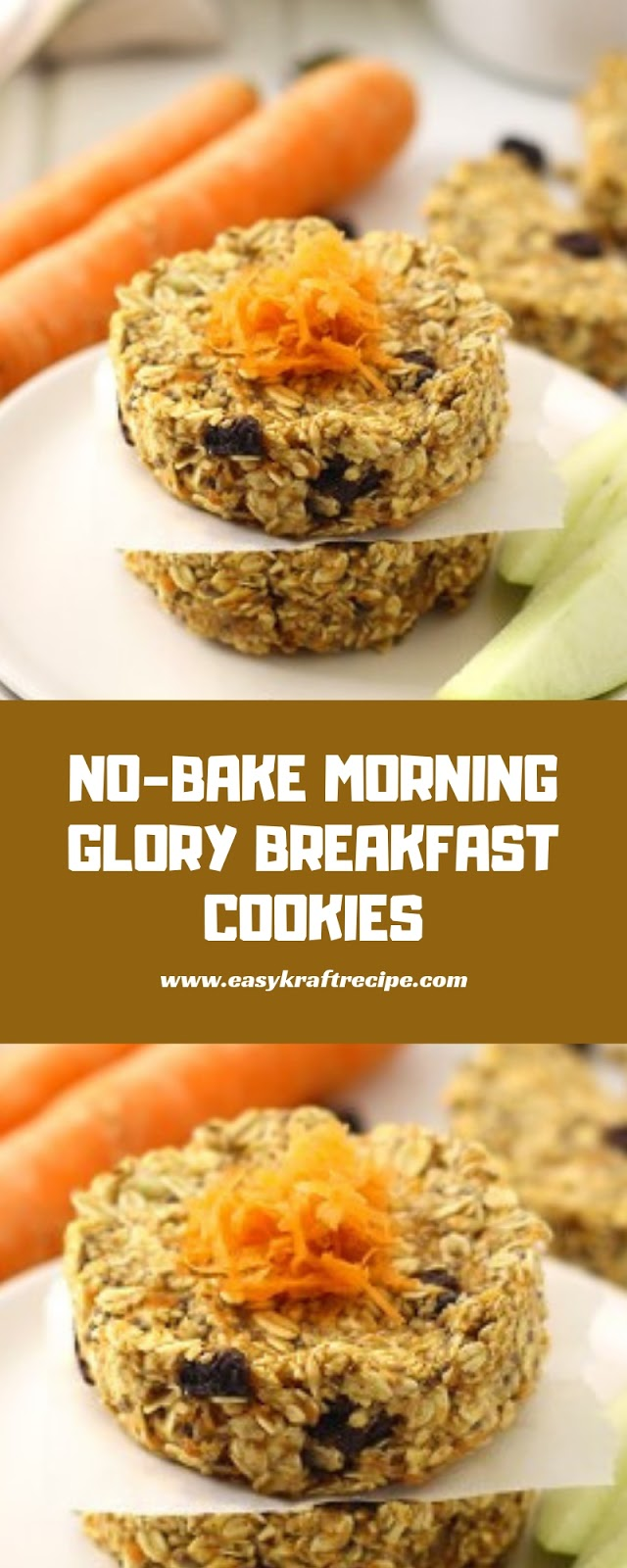 NO BAKE MORNING GLORY BREAKFAST COOKIES
