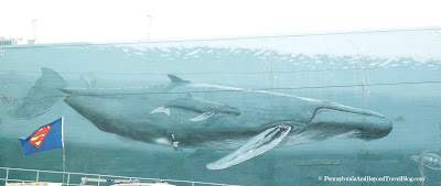 Wyland Whale Wall in Wildwood New Jersey