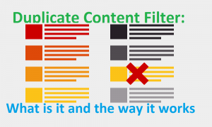 Duplicate Content Filter: What is it and the way it works