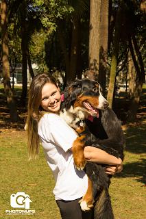 Adestrar cães - São Paulo - Bernesse