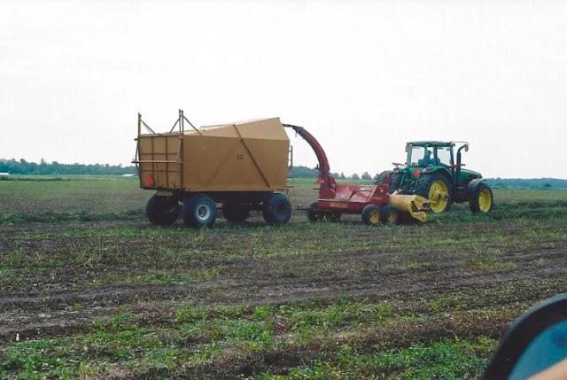Kanne Mint Farms, Jasper County, Indiana, Peppermint, Chasing Saturdays