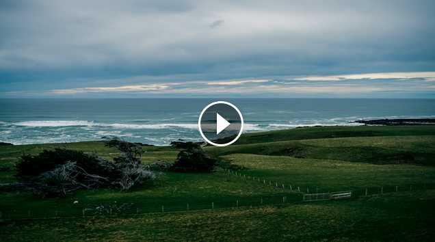 Xcel New Zealand