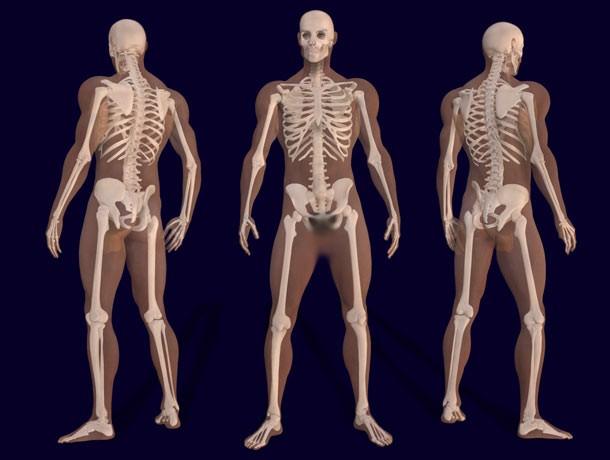 حقائق غريبة ومعلومات مجهولة عن جسم الإنسان