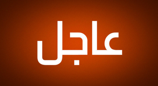 """الخارجية الروسية: نعول على أن عملية """"درع الشمال"""" عند الحدود مع لبنان لن تنتهك القرار الأممي 1701"""