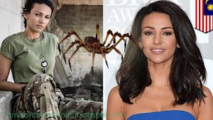 9 Arti Mimpi Digigit Laba-laba Menurut Primbon Jawa