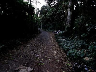 O garoto na trilha, quase imperceptível no fundo da foto, é Robert Ferreira, que caminha dois quilômetros até a casa da namorada