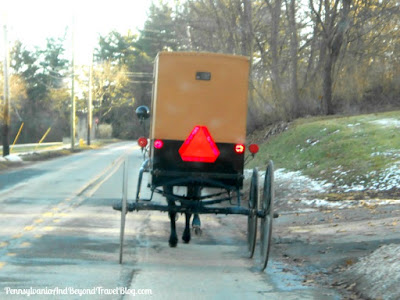 Amish Horse & Buggy in New Wilmington Pennsylvania