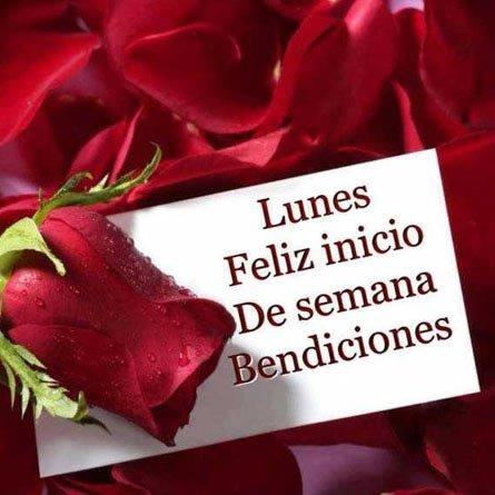 Feliz Lunes Y Inicio De Semana Tarjetas Con Flores Y Frases