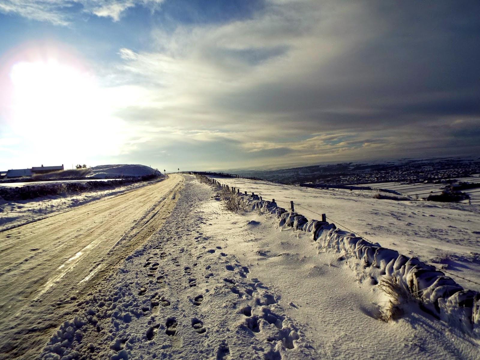 roper lane snow