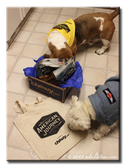 Dogs sniffing their American Journey treats from Chewy.com