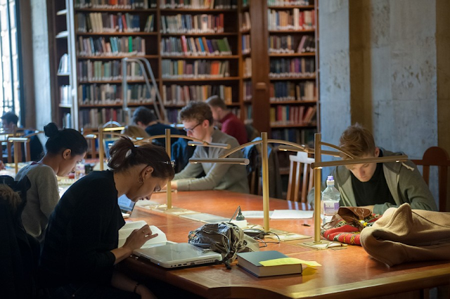 направления обучения в Оксфорде