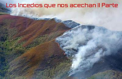 http://www.diariodeljarama.com/2018/01/los-incendios-que-nos-acechan-ii-parte.html