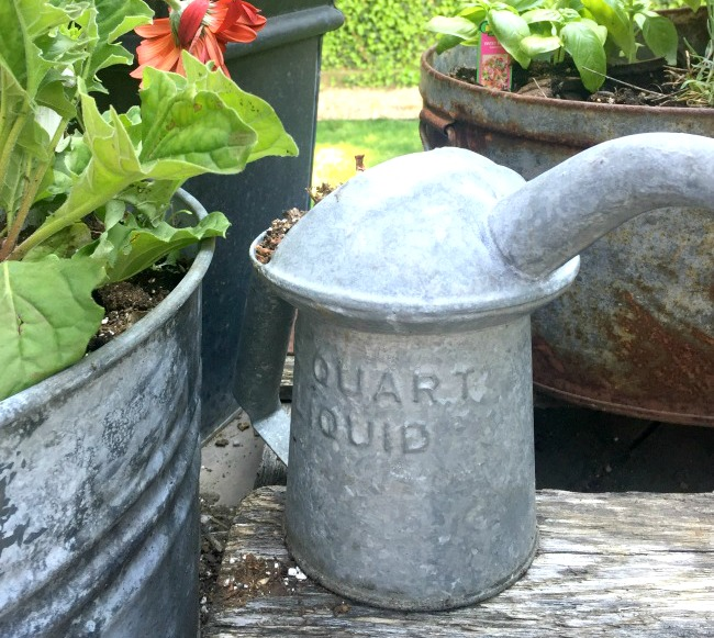 Treasures from the Country Living Fair in Rhinebeck, NY