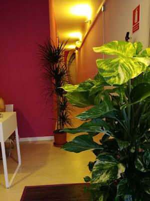 masaje, massatge, massage, masseuse, massagio, massagen ,relax, Palma, Palma de Mallorca