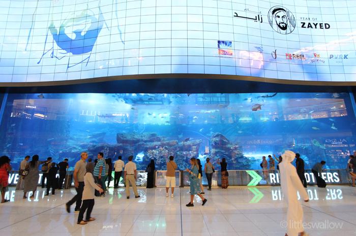Dubai Mall Aquarium - littleswallow.me
