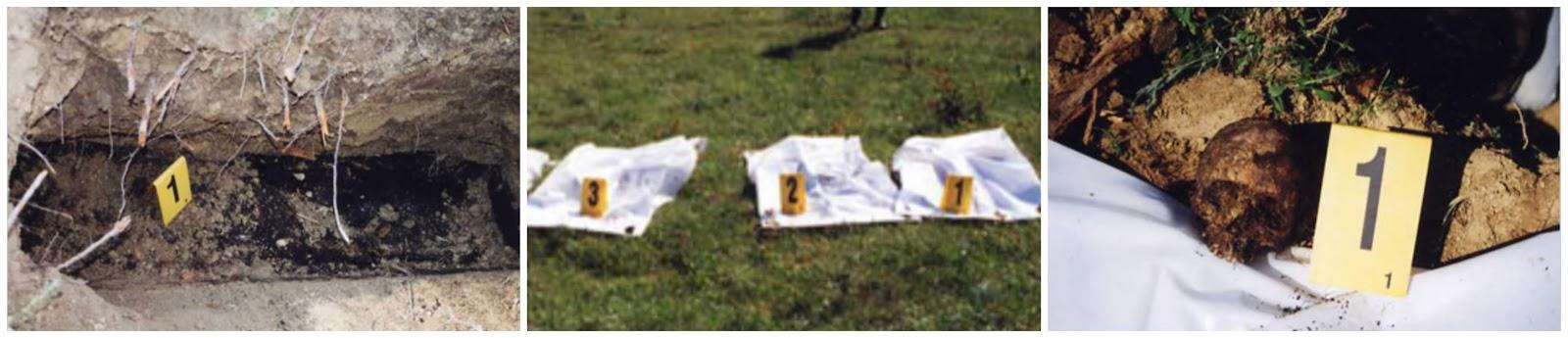 БРЕЗА 1992 : Слађана Ађић спаљена са двоје деце у породичној кући! Сњежана и Синиша имали по 18 месеци!