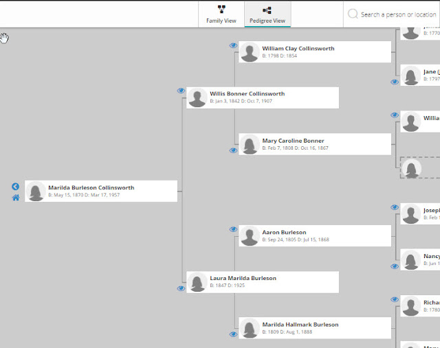 Family Finder family tree