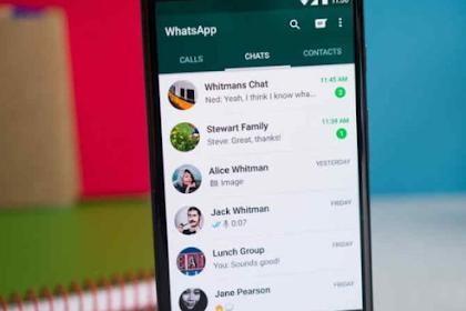 Tutorial Mudah Cara Menghilangkan Status Online di WhatsApp