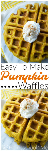 Easy to Make Pumpkin Waffles!! This is one of our favorite pumpkin recipes; perfect for fall. (kid recipes)